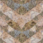 alice-fayle-pressed-floral