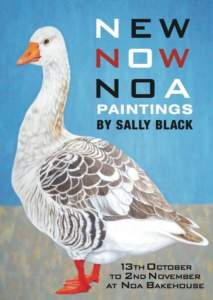 sally-black-noa